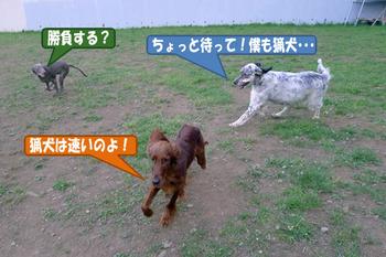05.05(レナ、グラン、シェル)-02.jpg
